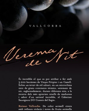 Proposal for print advertising campaign for Raimat wineries